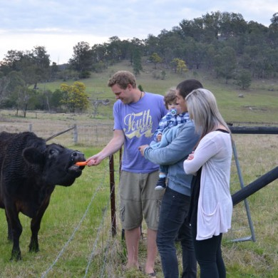 Stroll around the vineyard ... you never know who you will meet!