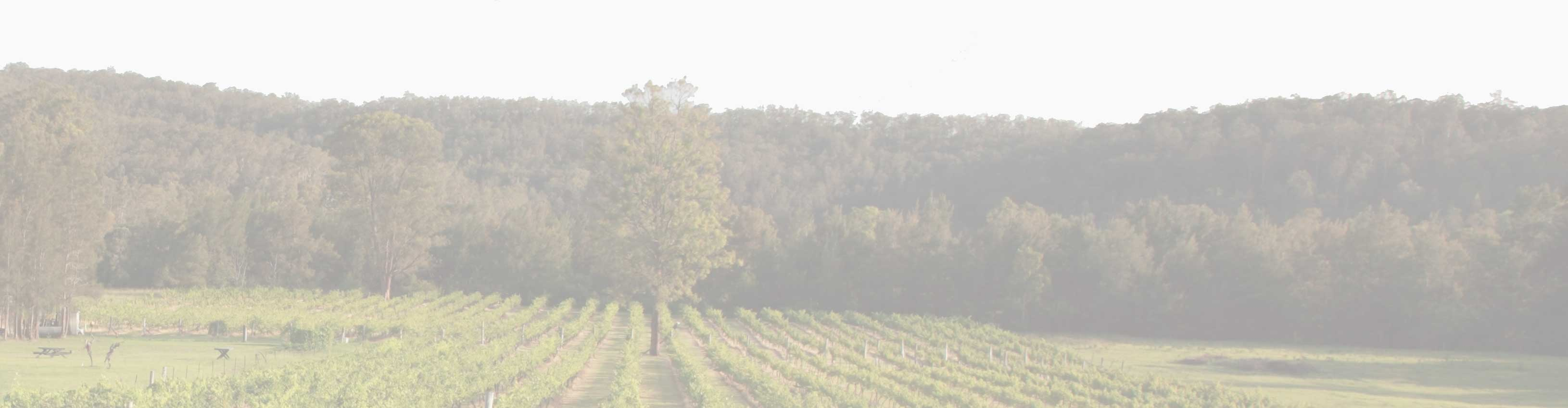 Wollombi Wines, Hunter Valley Vineyard and Accommodation