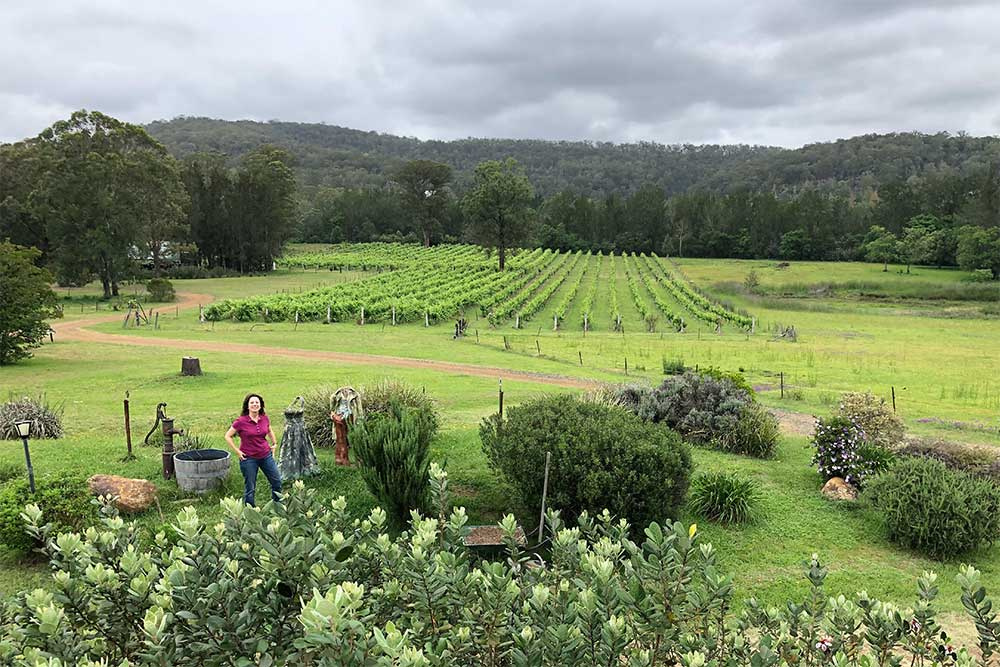 Wollombi Wines, Hunter Valley vineyard